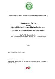 Consultancy Report to the Somali National Reconciliation Conference
