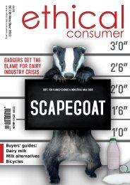 Dairy Milk - Ethical Consumer