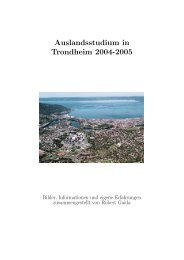 Auslandsstudium in Trondheim 2004-2005
