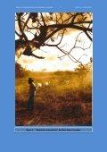 Boletim 5 OUT_DEZ_2010 - Sociedade Brasileira de Etnobiologia e ... - Page 7