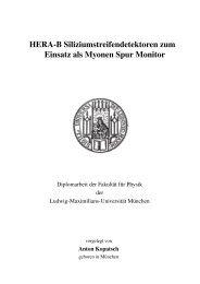 HERA-B Siliziumstreifendetektoren zum Einsatz als Myonen Spur ...