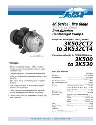 CAT PUMPS End-Suction, Two-Stage, Centrifugal Pumps Data Sheet.