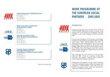 Work Programme 2003-2005 - ETUC