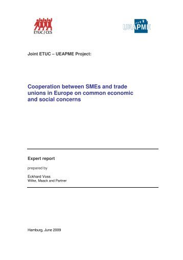 Cooperation between SMEs and trade unions in Europe on ... - ETUC