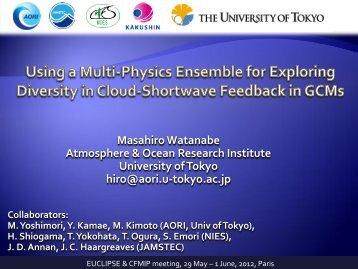 Using a multi-physics ensemble for exploring diversity in ... - euclipse