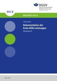 Dokumentation der Erste-Hilfe-Leistungen (Meldeblock) - DGUV