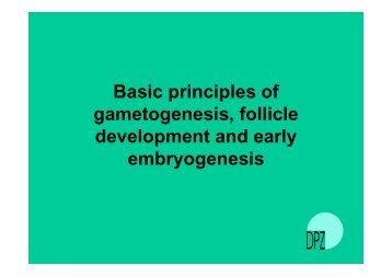 Basic principles of gametogenesis, follicle ... - EUPRIM-Net