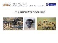 Stress response of the immune system - EUPRIM-Net
