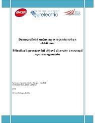 Demografické změny na evropském trhu s elektřinou ... - Eurelectric