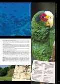 pORTUGAL - Euro Atlantic Airways - Page 7