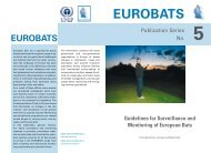 Guidelines for Surveillance and Monitoring of European ... - Eurobats