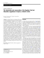 The destruction and conservation of the Egyptian Fruit bat ... - Eurobats