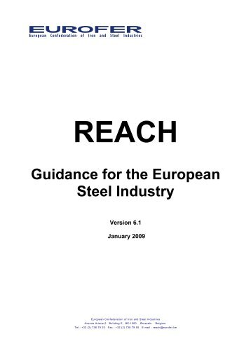 REACH Guidance for the European Steel Industry - Eurofer