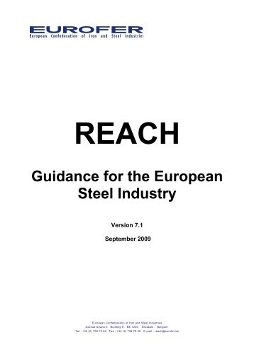 EUROFER REACH guidance for the European Steel Industry. 09.09 ...