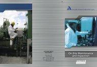 On-Site Maintenance and Inspection - Ansaldo Sistemi Industriali