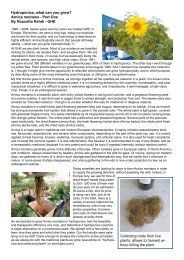 Hydroponics, what can you grow? - General Hydroponics Europe