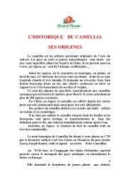 L'HISTORIQUE DU CAMELLIA SES ORIGINES