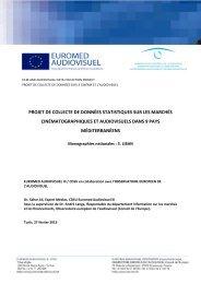 Rapport sur le Liban - Euromed Audiovisuel
