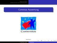 Comenius Auswertung