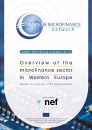 Overview of the Microcredit Sector in Western Europe - European ...