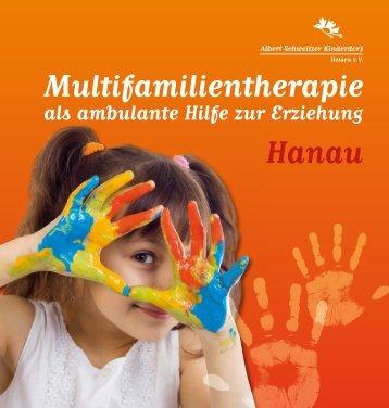 Multifamilientherapie als ambulante Hilfe zur Erziehung