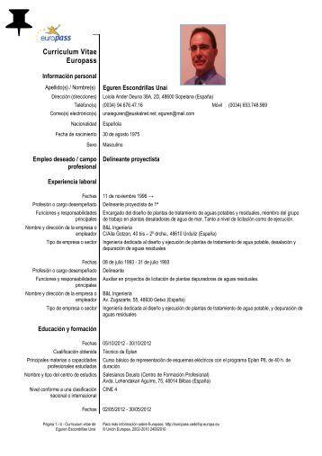 ejemplo curriculum vitae sin experiencia laboral pdf