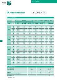 DC Getriebemotor 1.61.065.XXX