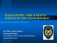 Download file (PDF)