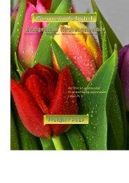 Frühjahr 2012 (pdf) - Evangelische Kirchengemeinde ...