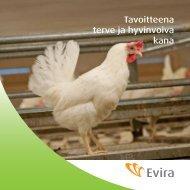 Tavoitteena terve ja hyvinvoiva kana - Evira