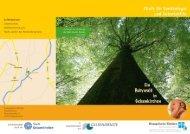 Flyer zum Babywald - Ev. Kliniken Gelsenkirchen
