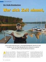 Zwar werden nicht mehr ganz so viele kapitale Raubfische ... - A.S.O.