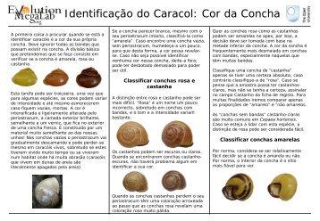 Identificação de caracóis - Evolution MegaLab