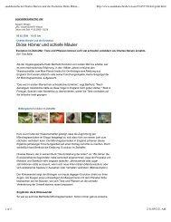 sueddeutsche.de Charles Darwin und die Evolution Dicke Hörner ...