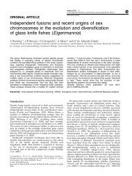 Independent fusions and recent origins of sex chromosomes in the ...