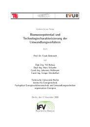 Biomassepotential und Technologiecharakterisierung der ... - EVUR