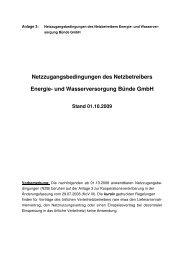 Netzzugangsbedingungen der Energie - Energie- und ...