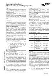 Leistungsbeschreibung EWE Multi Connect FV