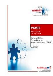 Demografische Entwicklung im Arbeitsmarktbezirk STEYR ... - Exabis