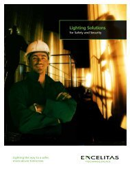Download the Excelitas Safety Lighting Solutions Brochure