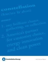 2010 Annual Report - Exelon Corporation