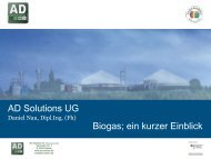 PDF: 2,8 MB - Exportinitiative Erneuerbare Energien - BMWi