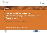 PDF: 5,3 MB - Exportinitiative Erneuerbare Energien