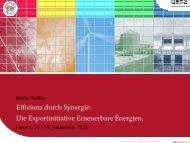 Effizienz durch Synergie: Die Exportinitiative Erneuerbare Energien.