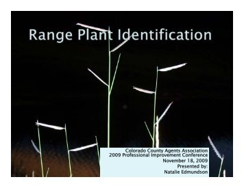 range plant ID.pdf - Colorado State University Extension
