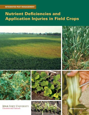 Nutrient Deficiencies and Application Injuries in Field Crops, IPM 42