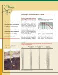 Corn Planting Guide - Iowa State University Extension and Outreach - Page 2
