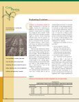 Corn Planting Guide - Iowa State University Extension and Outreach - Page 6