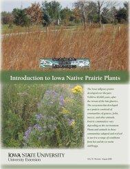 Introduction to Iowa Native Prairie Plants - Iowa State University ...
