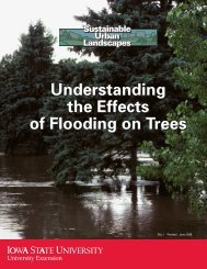 Understanding the Effects of Flooding on Trees - Iowa State ...